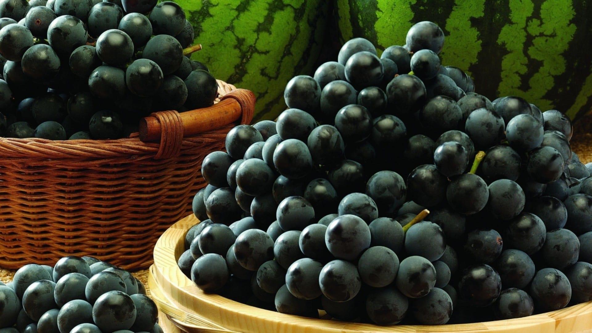 Cửa hàng trái cây nhập khẩu, trái cây VN, sạch số 1 tphcm - Vinfruits.com