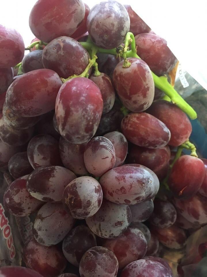 Nho đỏ không hạt Mỹ - Vinfruits.com