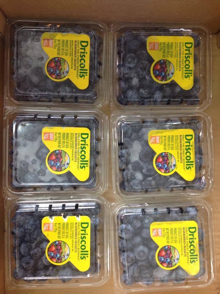 Việt quất Mỹ nhập khẩu - Vinfruits.com