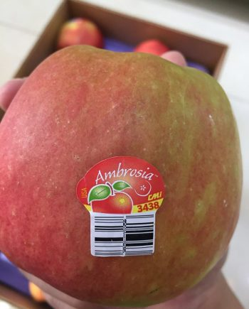 Táo Ambroisa Mỹ - Vinfruits.com