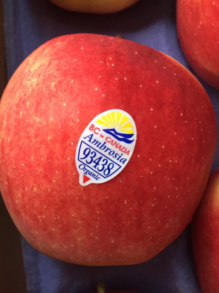 Táo ambrosia Canada Organic - Vinfruits.com