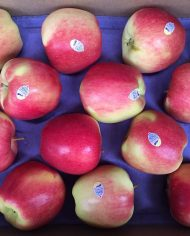 Táo Ambrosia Organic – Vinfruits.com