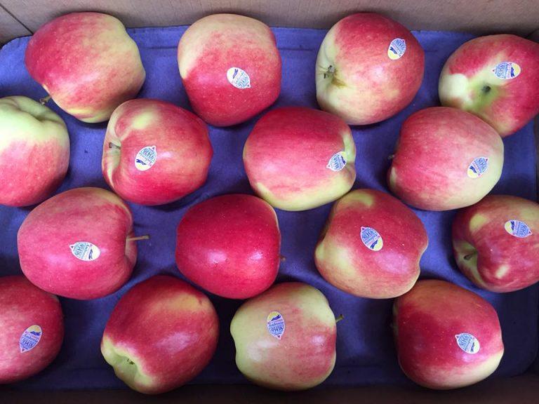 Táo Ambrosia Organic - Vinfruits.com