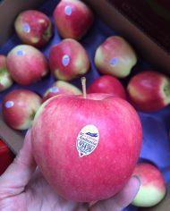 Táo hữu cơ ambrosia Canada Organic – Vinfruits.com