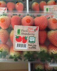 Quả Dâu Tây Hàn Quốc – Vinfruits.com