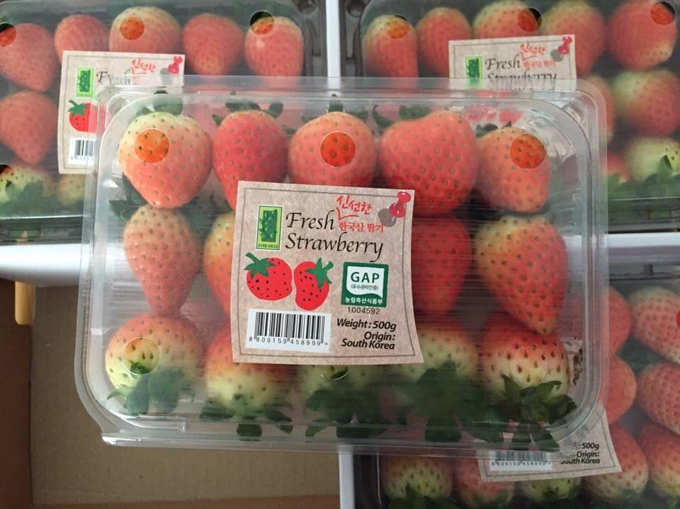Quả Dâu Tây Hàn Quốc - Vinfruits.com