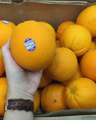 Cam Cara ruột đỏ nhập khẩu – Vinfruits.com