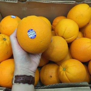 Cam Cara ruột đỏ nhập khẩu - Vinfruits.com