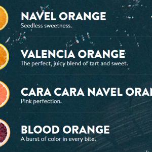 Các loại cam Sunkit Úc - Vinfruits.com
