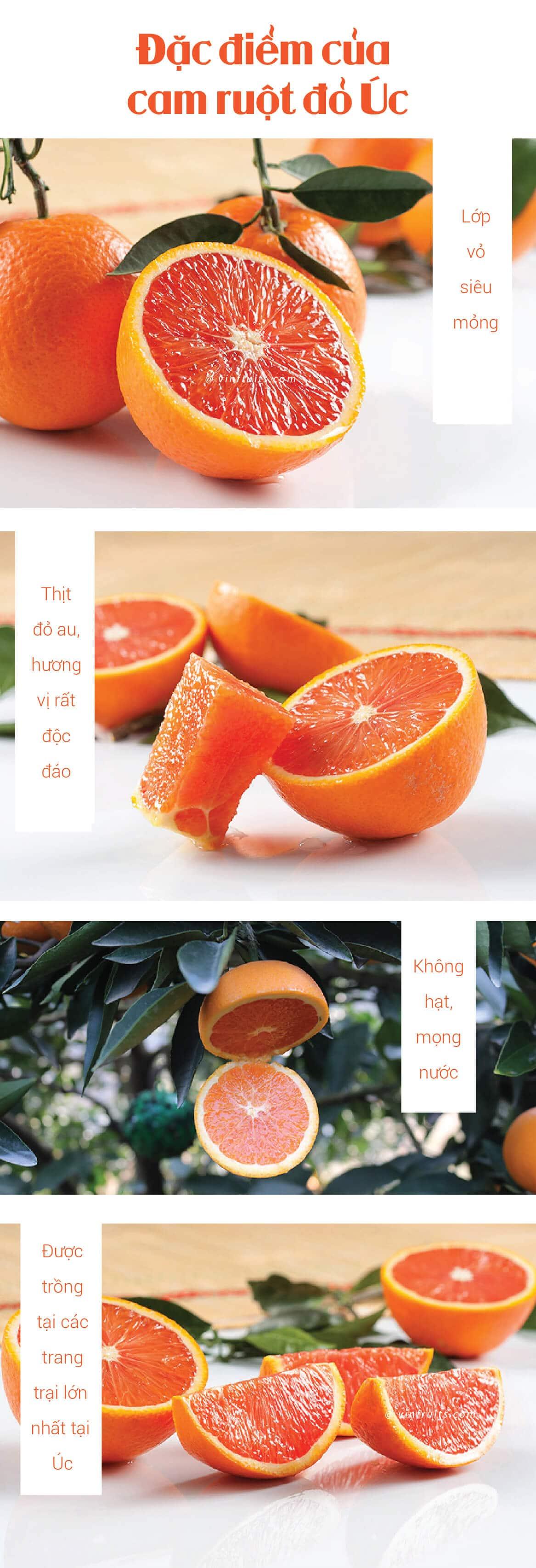 Cam ruot do Cara Uc - vinfruits.com 2