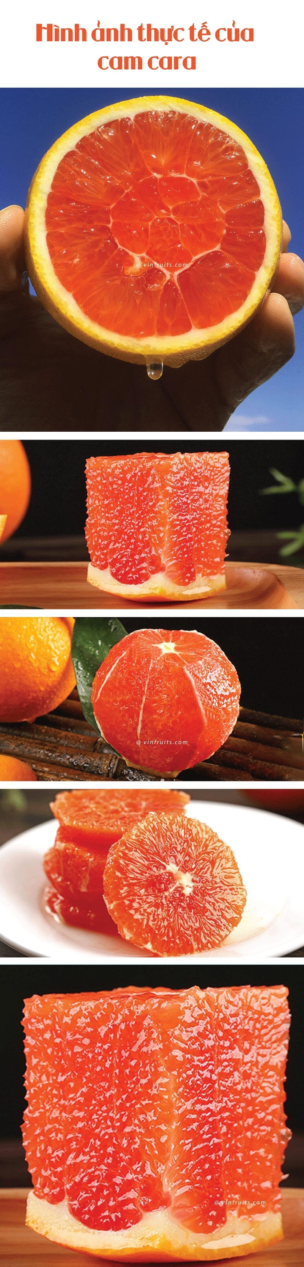 Cam ruot do Cara Uc - vinfruits.com 3