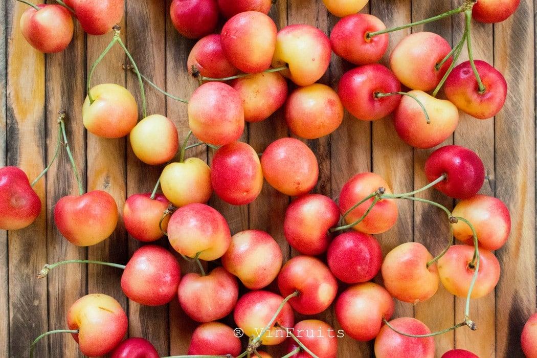 Cherry vàng Mỹ - Vinfruits