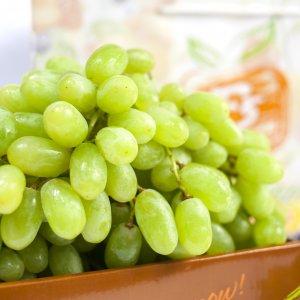 Nho-xanh-khong-hat-Uc-Vinfruits.com