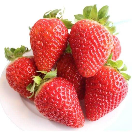 Dau tay Uc - vinfruits.com 2