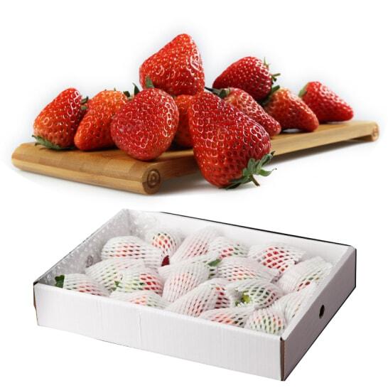 Dau tay Uc - vinfruits.com 6