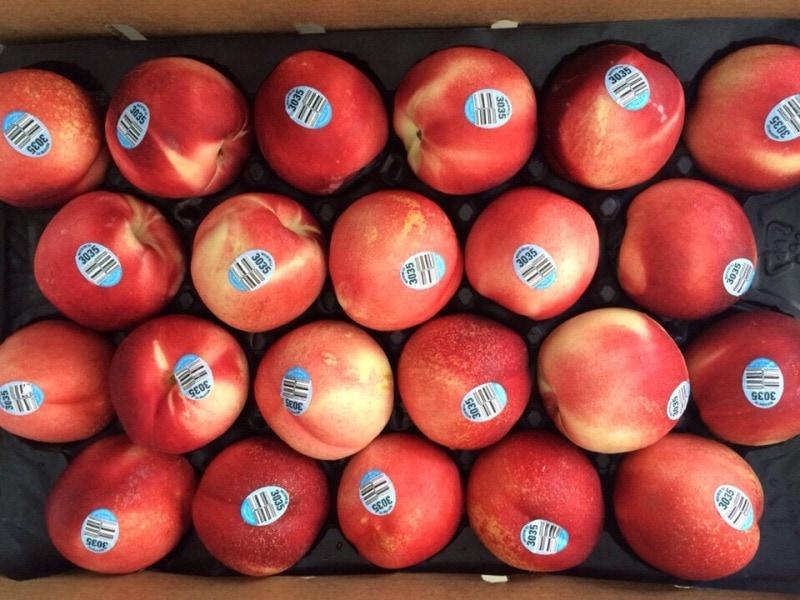 Xuân đào Mỹ - Vinfruits.com