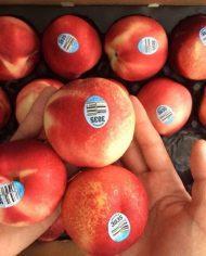 Xuân đào Mỹ nhập khẩu – Vinfruits.com