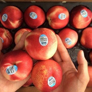 Xuân đào Mỹ nhập khẩu - Vinfruits.com