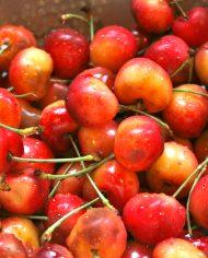 Cherry Mỹ nhập khẩu