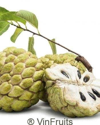 Na-Chi-Lang-Lang-Son-Vinfruits