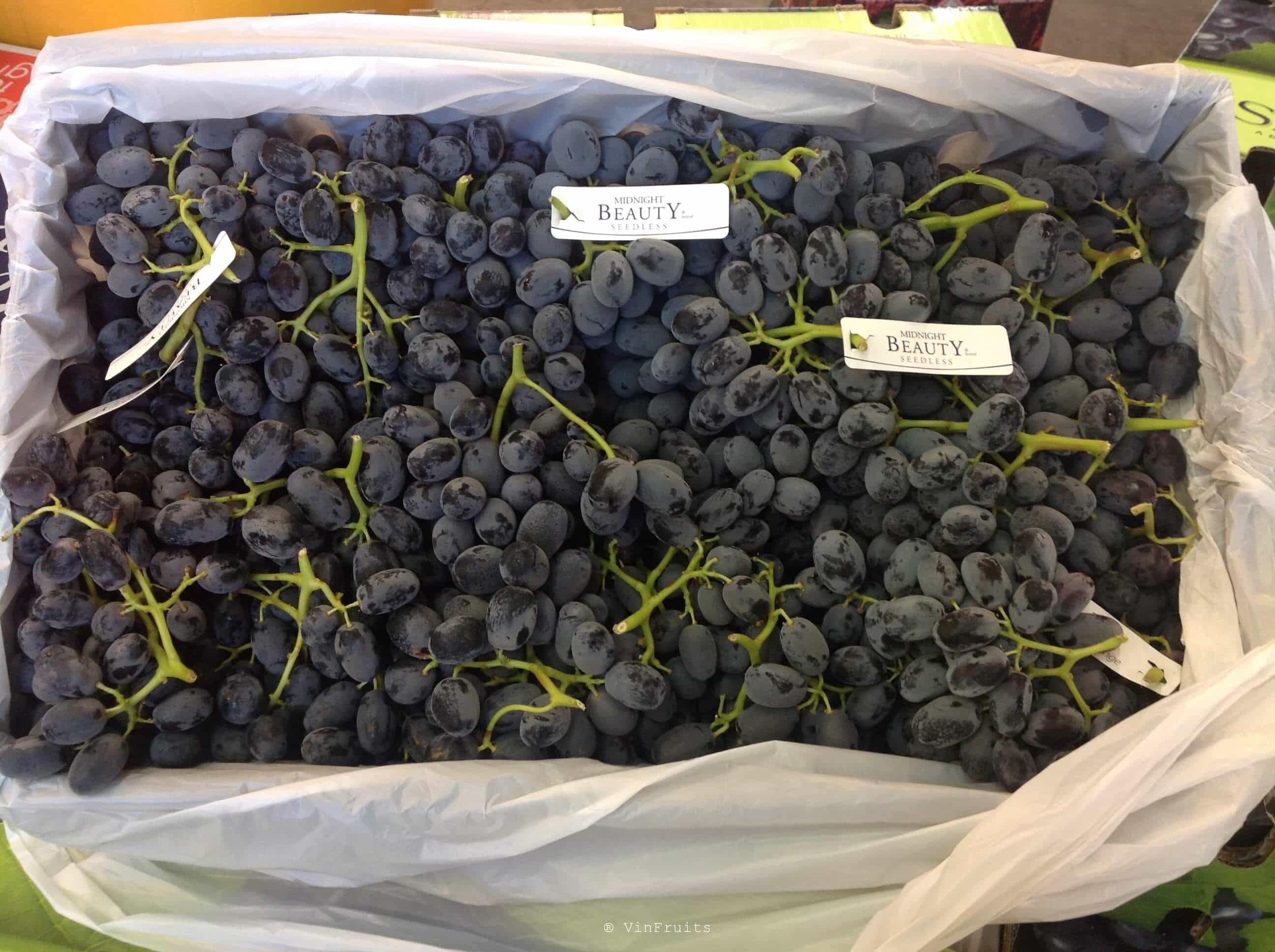 Nho đen không hạt - Black Grape Mỹ - VinFruits