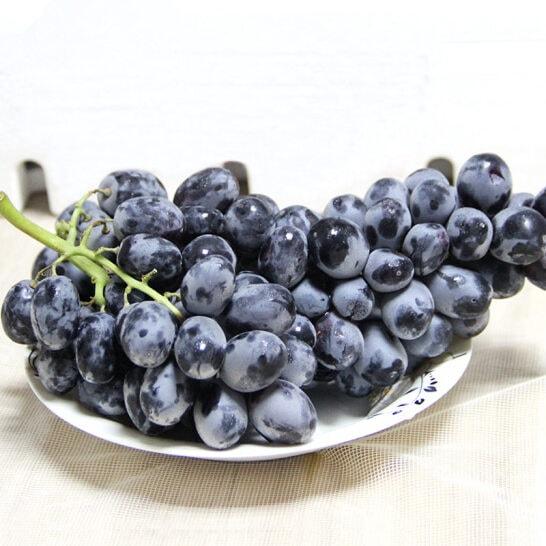 Nho den Bravante My - vinfruits.com 1