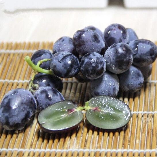 Nho den khong hat My - vinfruits.com 2