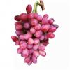 Nho do khong hat My - vinfruits.com 5