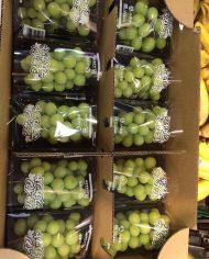 Nho mẫu đơn Nhật 4 – Vinfruits.com