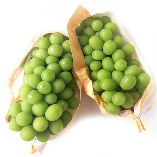 Nho mau don Shine Muscat Nhat Ban - vinfruits.com 3