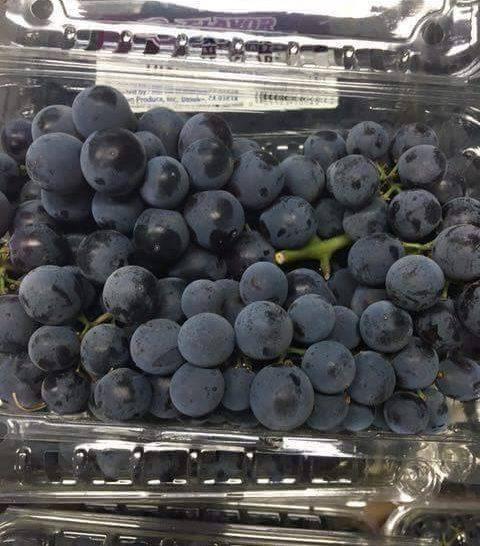 Nho tiêu thomcord grapes Mỹ01