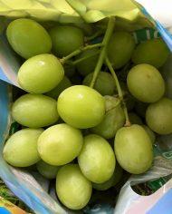Nho xanh Úc nhập khẩu – Vinfruits.com