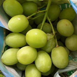 Nho xanh Úc nhập khẩu 2 - Vinfruits.com