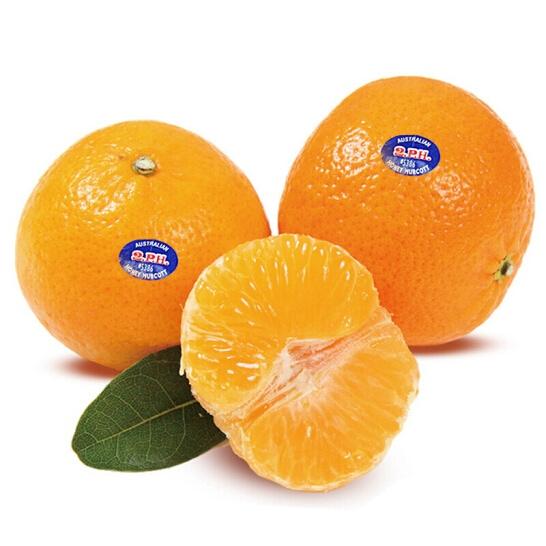Quyt Uc - vinfruits. com 3