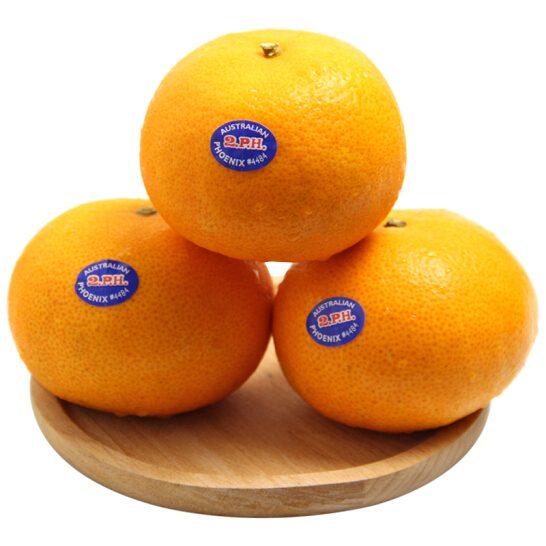 Quyt Uc - vinfruits. com 5