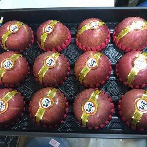 Tao Fuji Han Quoc - Vinfruits.com