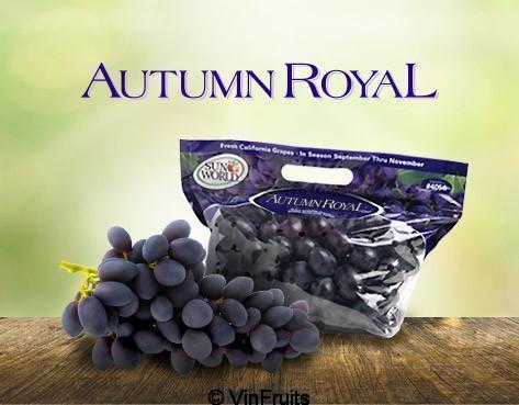 nho-den-khong-hat-autumn_royal-vinfruits.com