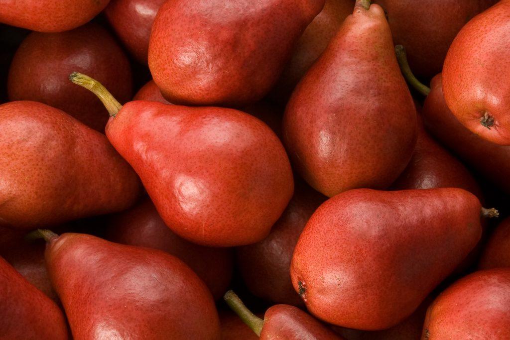 Le-do-My-nhap-khau-Vinfruits.com