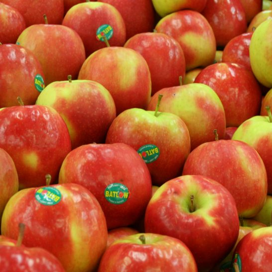 Tao-Pink-Lady-Tao-My-nhap-khau-Vinfruits.com