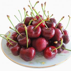 cherry-do-number-one-canada-vinfruits.com