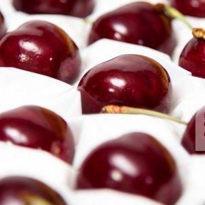 Cherry-do-Newzealand-nhap-khau-vinfruits.com