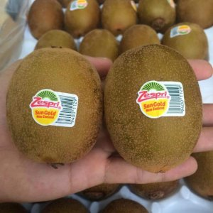 Kiwi-vang-newzealand-vinfruits.com