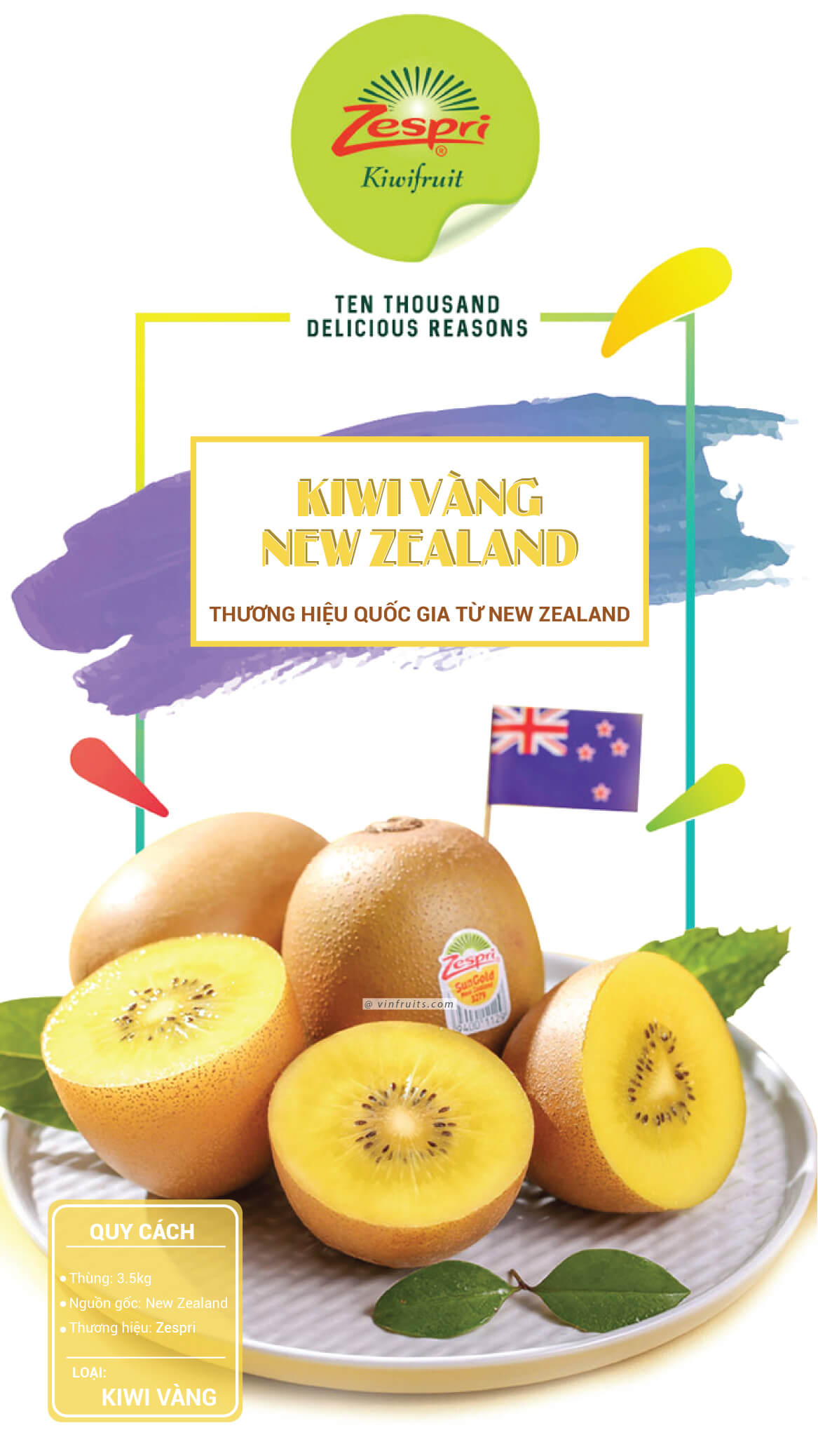 Giong kiwi vang New Zealand - vinfruits