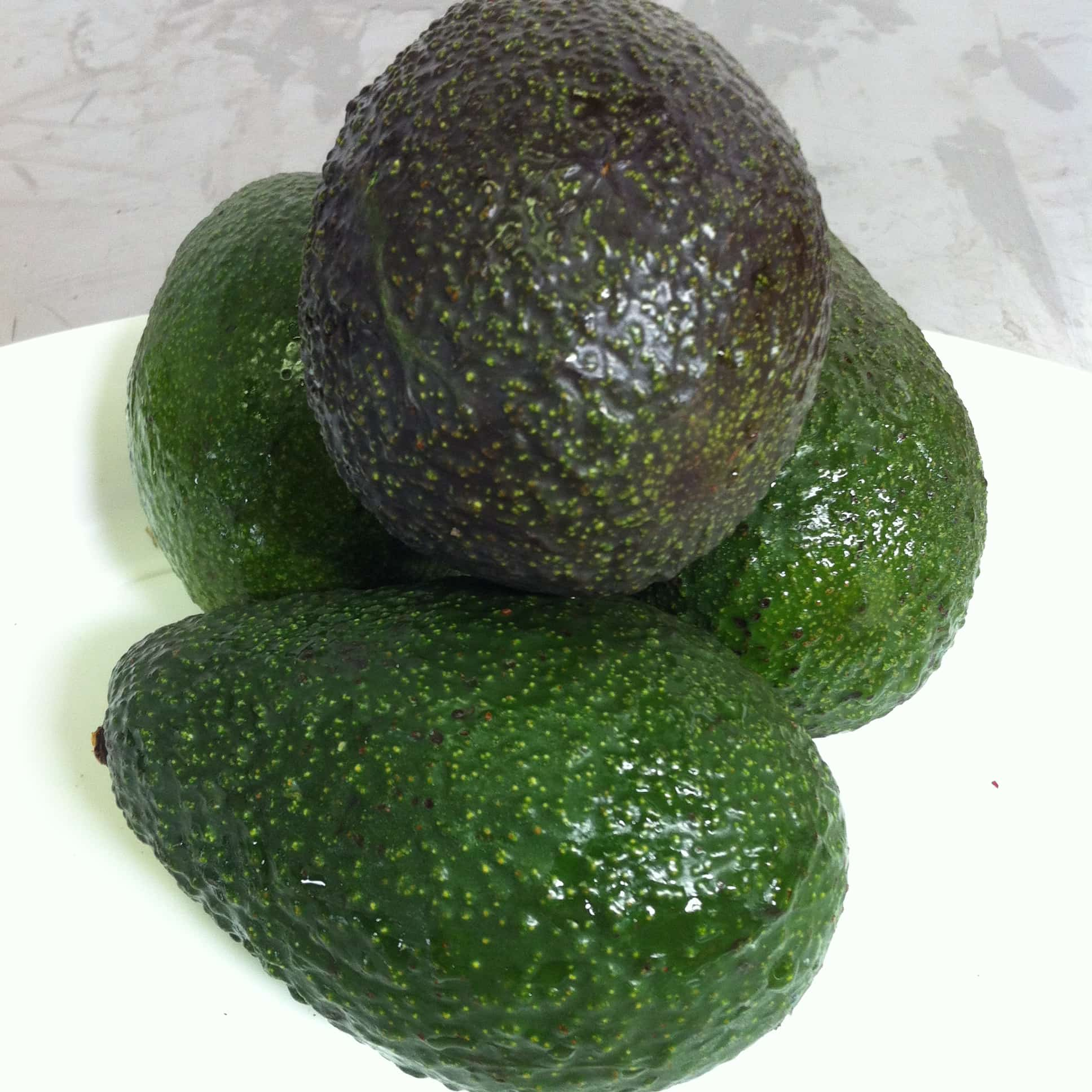 Quả bơ Úc nhập khẩu - Vinfruits.com