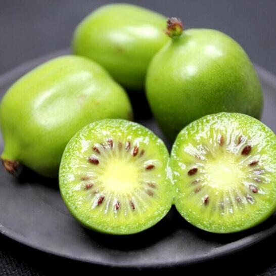 Kiwi berry NZ - vinfruits.com 1