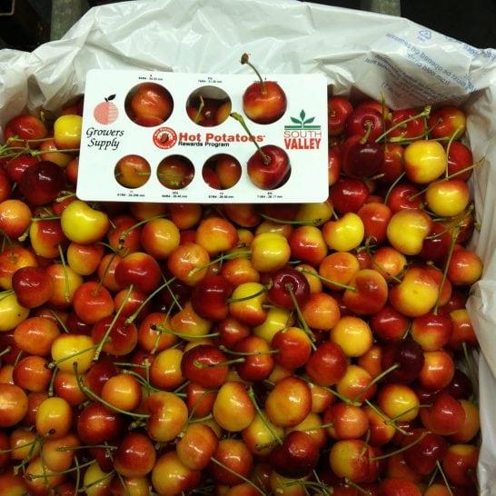 Cherry-vang-Canada-nhap-khau-vinfruits.com