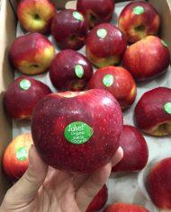 Táo hữu cơ Juliet Phap nhập khẩu – vinfruits.com