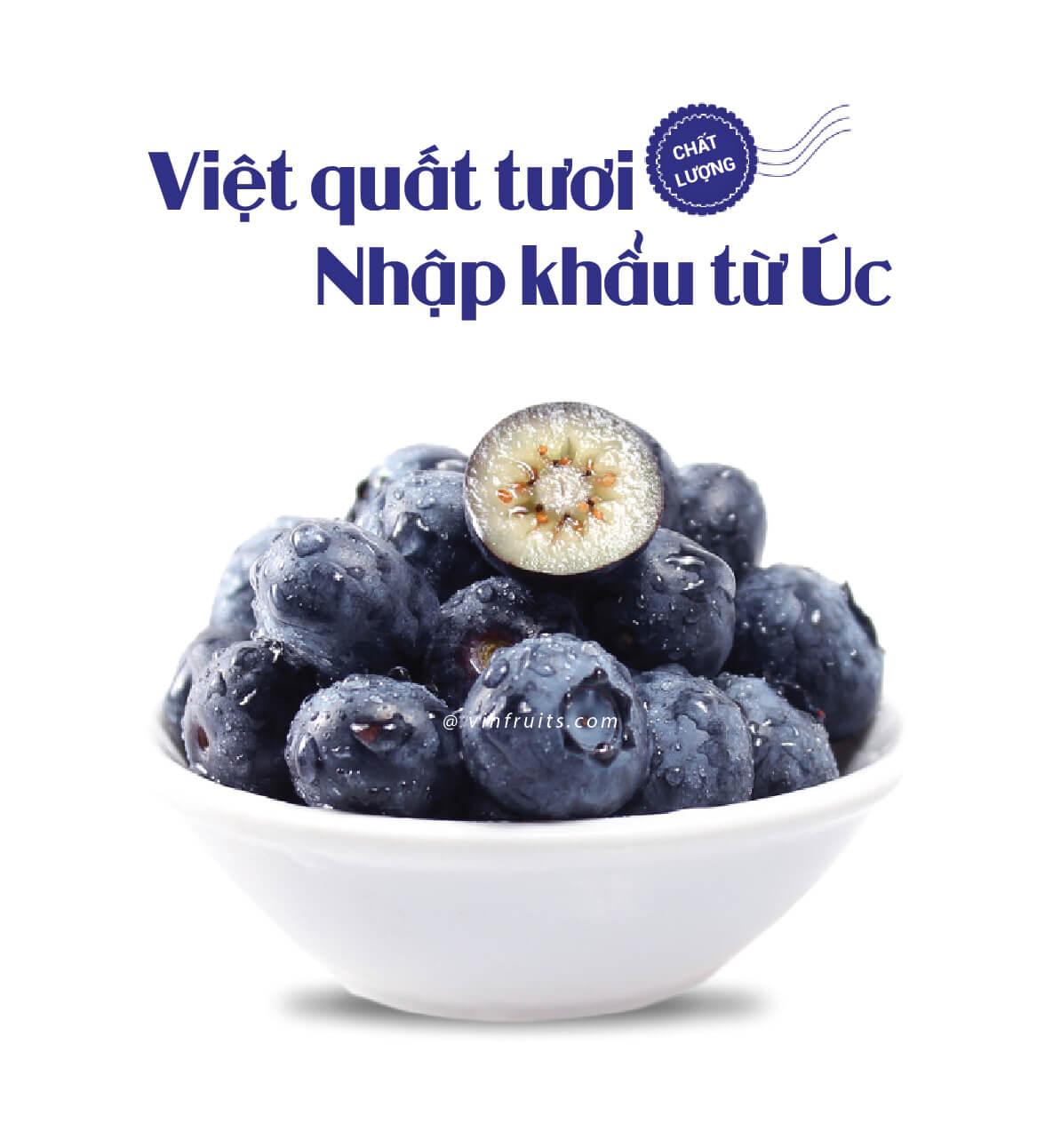 Viet quat tuoi Uc - vinfruits.com 1