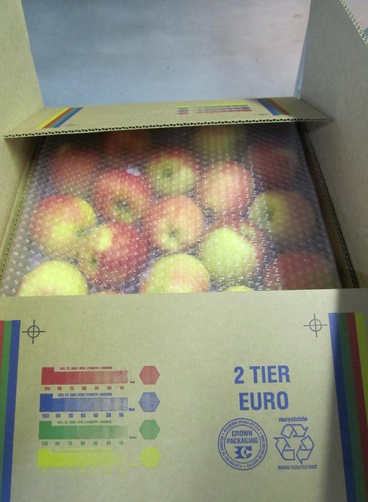 tao-ambrosia-nhap-khau-vinffruits.com