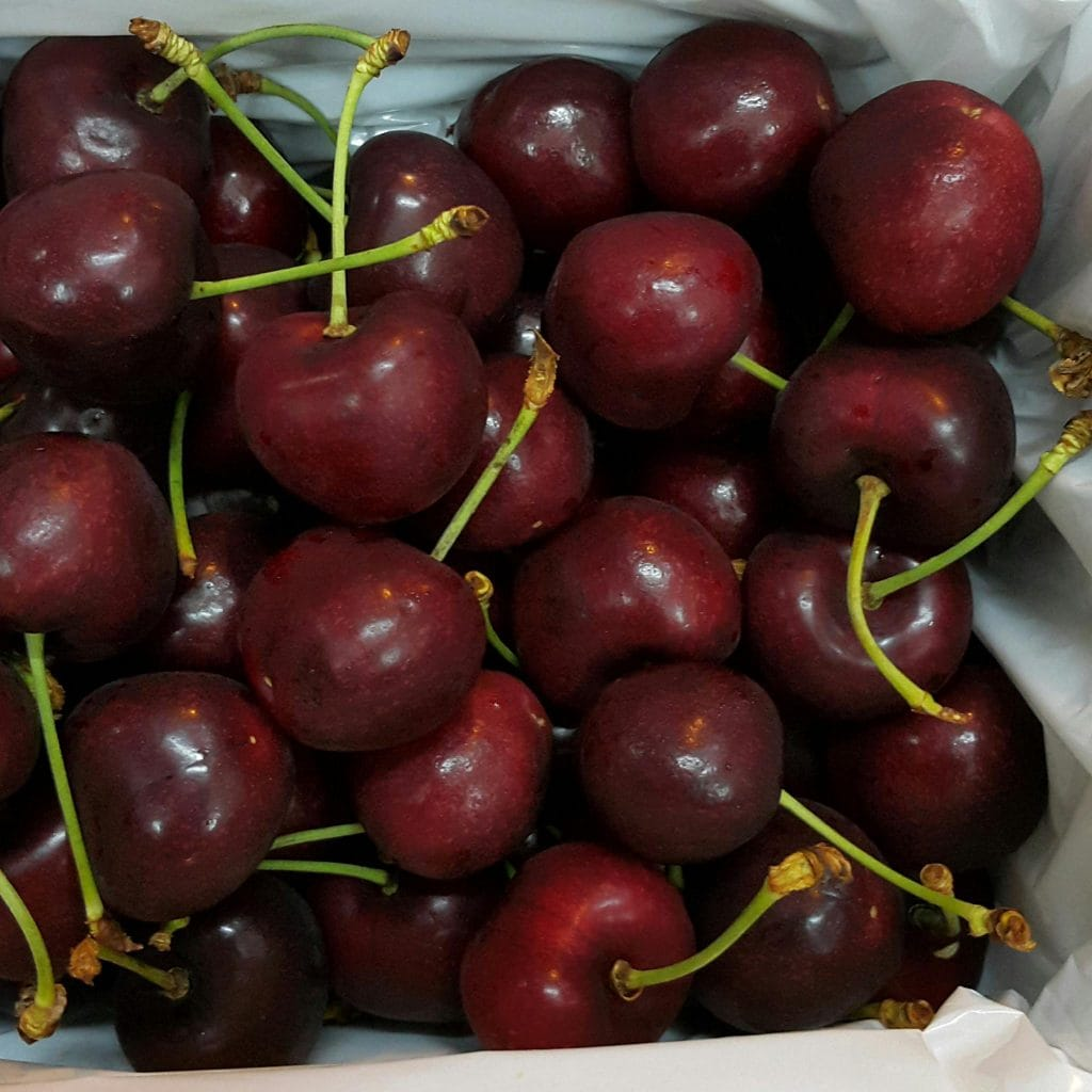 cherry-new-zealand-size-30-vinfruits.com
